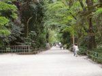 京都旅行 夏におすすめの観光スポット 服装と持ち物は?
