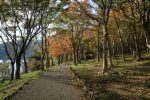 箱根旅行 11月の天気・気温と服装 混雑は平日も?