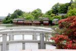 京都のホテルが取れない時は長岡京の宿!サントリーの工場見学にも便利な宿